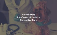 How to Help Pet Owners Prioritize Preventive Care